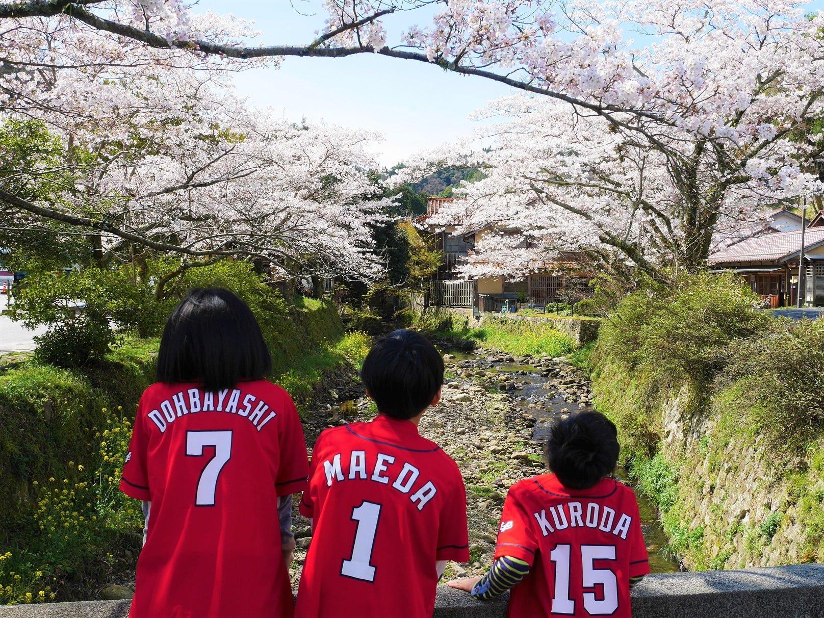 桜前線とご一緒に 私も花見に赴くのです